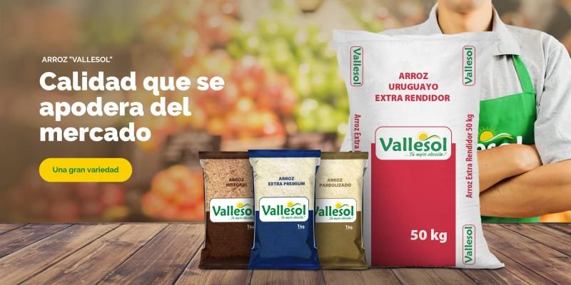 Vallesol, el rey de los mercados